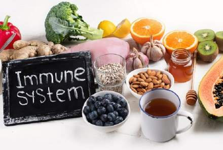 immunity boosting foods for seniors