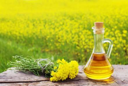 Mustard Oil Benefits For Elders